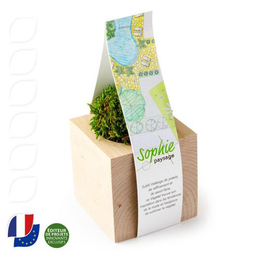 Boule de mousse végétale dans son cube en bois