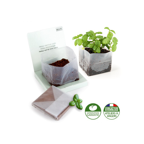 Kit de plantation carré coco box avec graines à semer